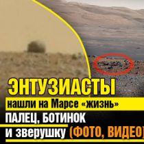 Энтузиасты нашли на Марсе «жизнь»: палец, ботинок и зверушку (ФОТО, ВИДЕО)