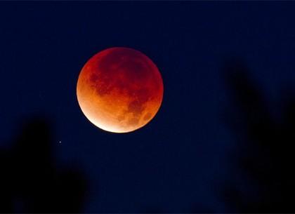 Грядет редчайшее затмение: харьковчане смогут полюбоваться «кровавым суперлунием»