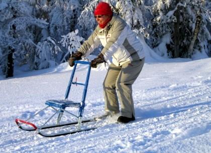 Парк Горького приглашает прокатиться на финских санях
