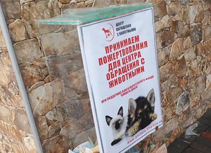 В Харькове появились мошенники, которые собирают деньги «на приют для животных» (ФОТО)