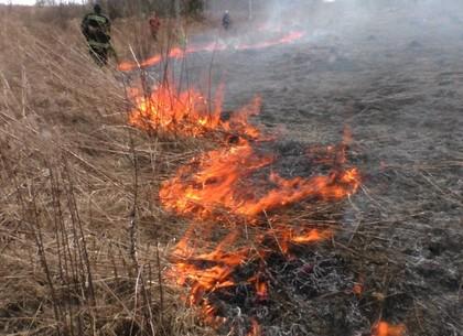 В Пятихатках произошел пожар возле АЗС