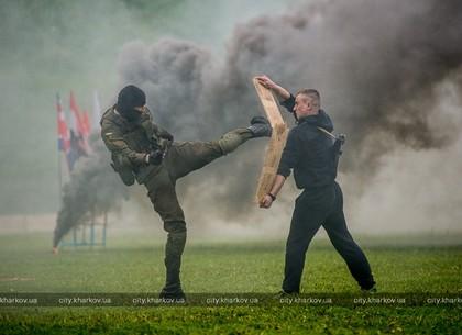 В Харькове прошел фестиваль боевых искусств (ФОТО)