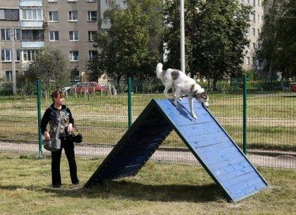 На Новых Домах открыли площадку для выгула собак (ФОТО)