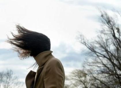 Харьковчан предупреждают о яростном ветре