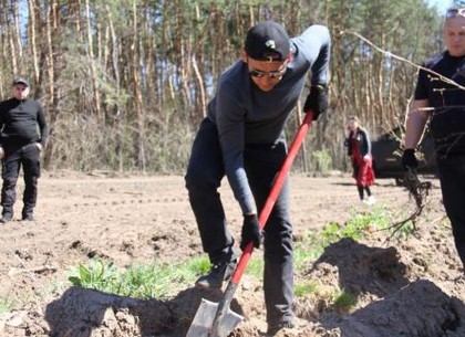 Депутаты «Відродження» вместе с волонтерами и студентами посадили 9 тысяч деревьев