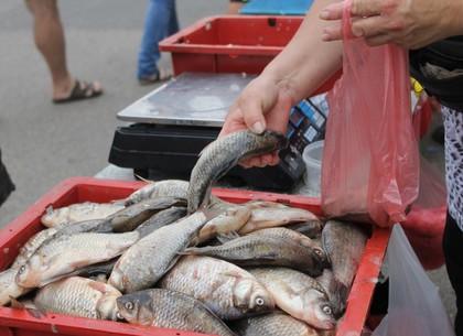 На Харьковщине в рамках борьбы с ботулизмом изымают речную рыбу