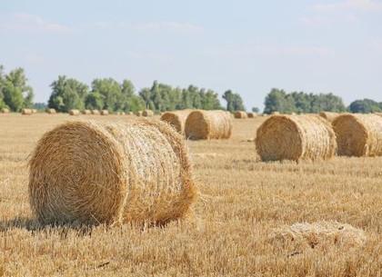 Аграрии Харьковщины намолотили второй миллион тонн зерна