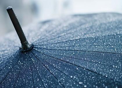 Не забудь зонт: в Харькове обещают ливень