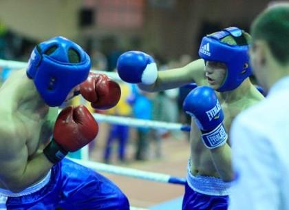 В парке Горького состоится городской турнир по боксу