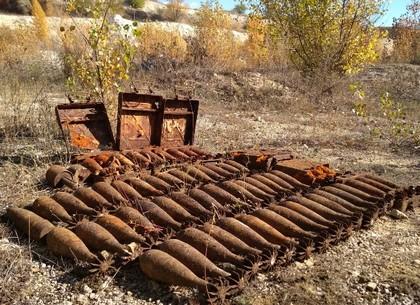 Изюмские грибники нашли залежи заржавевших снарядов (ФОТО)