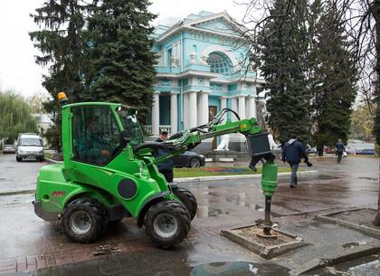 Возле центрального Дворца бракосочетаний в Харькове высаживают деревья