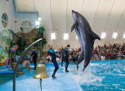 Более 1000 детей посетили харьковский дельфинарий