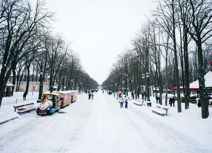 Снежные выходные в парке Горького: программа