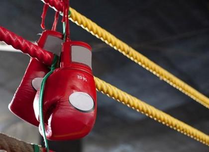 Харьковчанки завоевали золотые медали чемпионата Украины по боксу