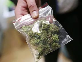 На Харьковщине во время обыска у женщины нашли запасы наркотиков ее сожителя