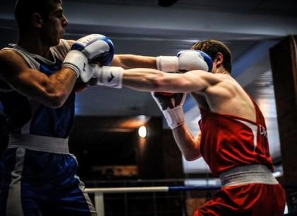 Харьков принимает у себя международный боксерский турнир