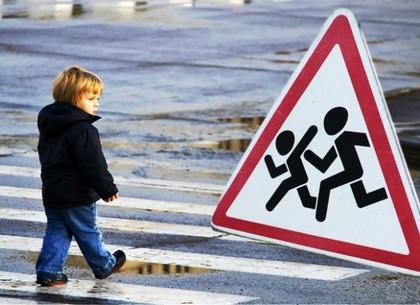 Для школьников проведут занятия по безопасности дорожного движения