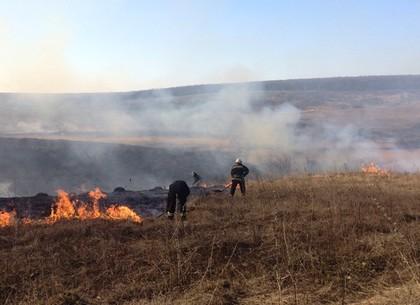 В течение суток спасатели ликвидировали 84 пожара на Харьковщине