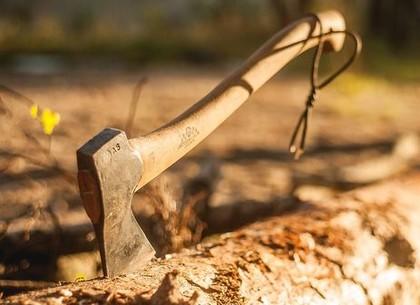Мужчина  зарубил топором «неудобного» арендатора: дело передали в суд