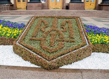 Клумбу с гербом Украины высадили перед ХОГА