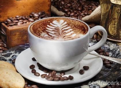 В парке Горького будут варить авторский кофе