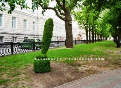 В центре Харькова появилась чернильница из кустарника (ФОТО)
