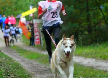 В Центре обращения с животными установят новый рекорд Украины
