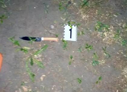 «Ограбление у метро»: угрожая ножом, грабитель украл телефон (ФОТО)