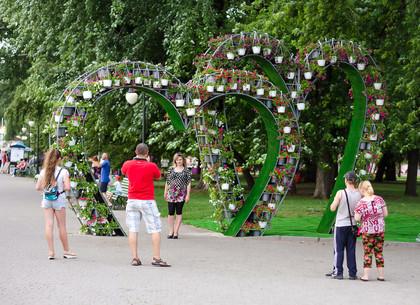 Цветочная арка в форме сердечек появилась в Харькове