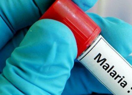Африканский студент привез малярию в Харьков