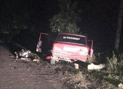 17-летний парень погиб за рулем мотоблока (ФОТО)