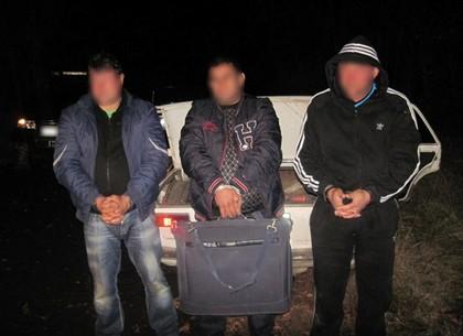 В Волчанском районе полиция обнаружила двух нарушителей миграционного законодательства