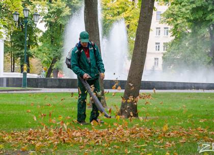 Игорь Терехов дал поручение качественно убирать город от листвы