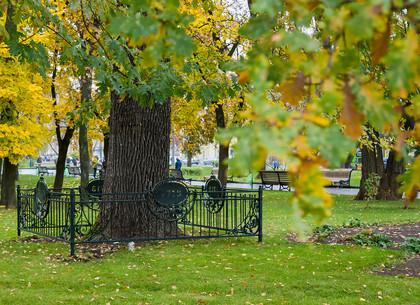 Часть сада Шевченко открыта после реконструкции