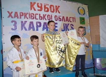 Каратэ. Харьковчане - чемпионы и призеры Кубка области (ФОТО)