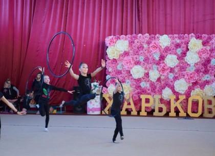 В Харькове стартует всеукраинский фестиваль по художественной гимнастике (ФОТО)