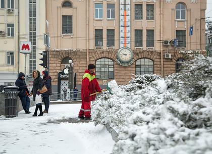 В Харьков пришли снегопады (ФОТО)