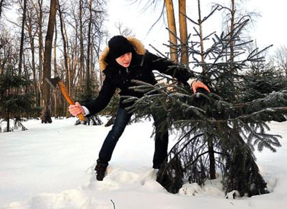 «Срубить елочку под самый корешок» без ведома лесника на Харьковщине практически невозможно.