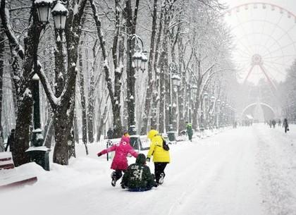 Зимние выходные в парке Горького: развлекательная программа
