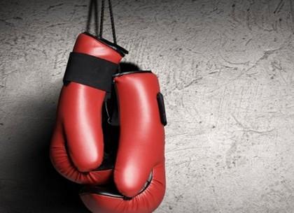 На выходных прошли баталии бойцов ММА, боксеров и тайцев: итоги схваток