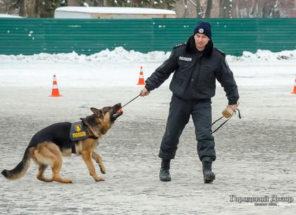 Полицейские Харькова готовятся заступить на праздничные дежурства