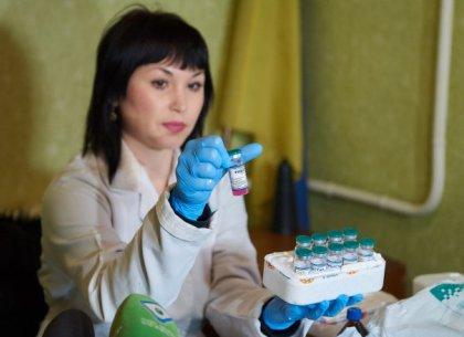 Бесплатная вакцинация домашних животных от бешенства: сроки, условия и места проведения