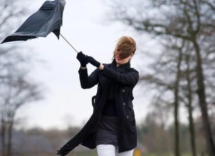 Северный циклон пригонит дождь: прогноз погоды в Харькове на выходные