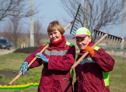 В Харькове коммунальщики приводят дворы в порядок