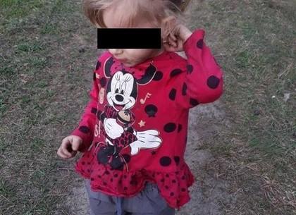 Родители-скандалисты потеряли двухлетнюю малышку (ФОТО)