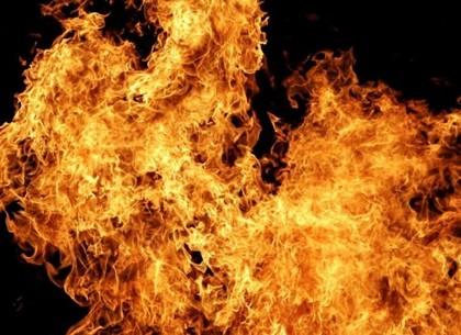 Обидевшийся вор травмировал ледорубом и сжег в подвале мужчину