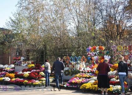 Минприроды призывает харьковчан не нести на кладбище пластиковые цветы