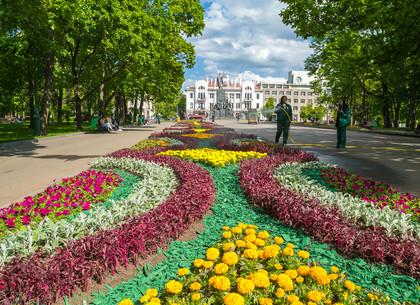 Сад Шевченко в Харькове (ФОТО)