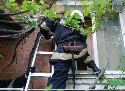 В пригороде Харькова предотвращена трагедия