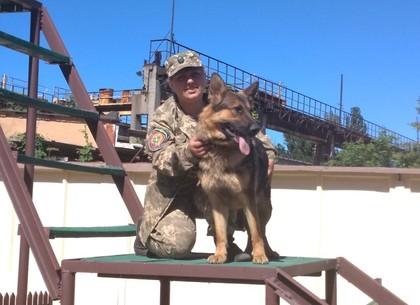 В харьковской колонии завершились региональные соревнования служебных собак (ФОТО)
